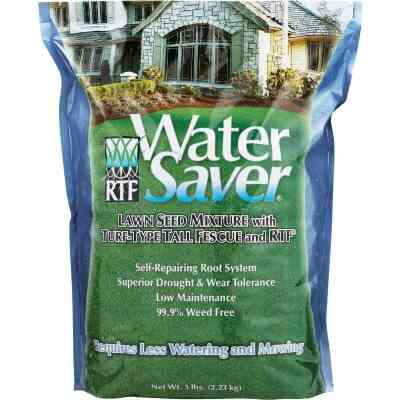 Water Saver 5 Lb. 500 Sq. Ft. Coverage Tall Fescue Grass Seed